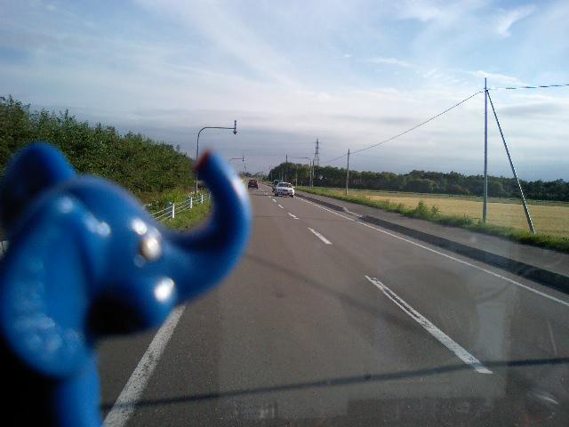 北海道らしい道